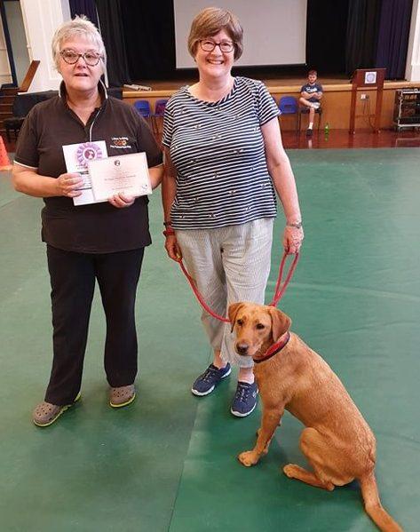 lincs-dog-training-4